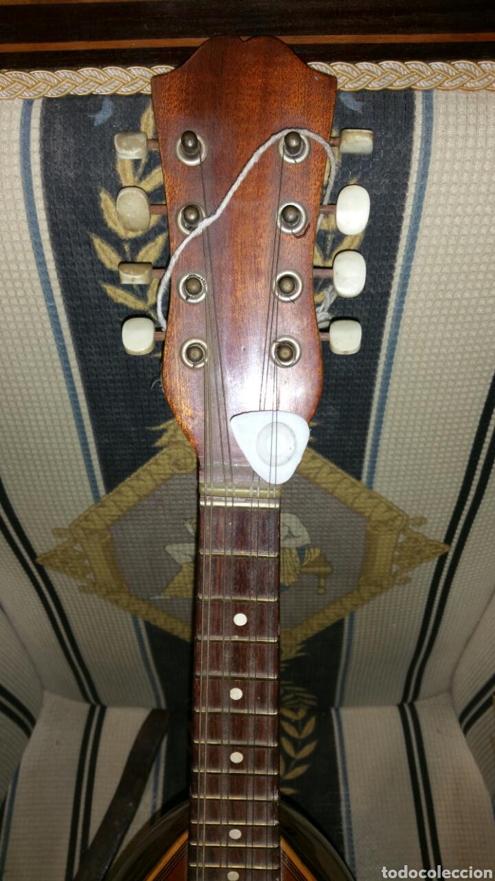 Instrumentos musicales: Mandolina de gran calidad de maderas y marquetería - Foto 2 - 110648156