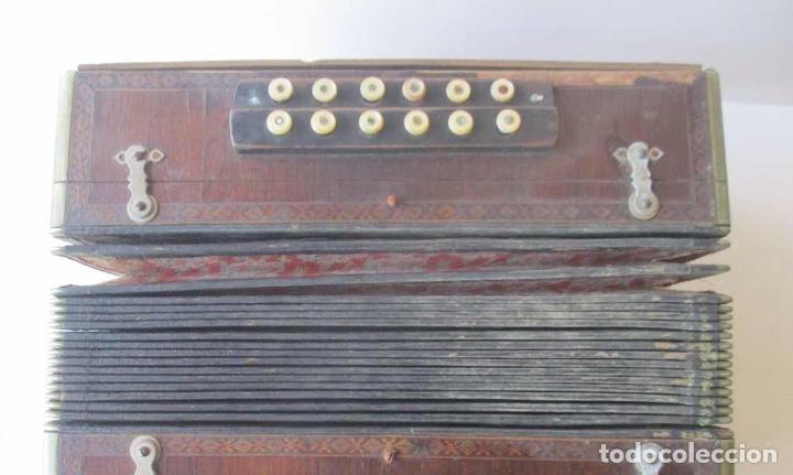 Instrumentos musicales: ACORDEON DIATONICO - COMM. PAOLO SOPRANI E FIGLI, ANCORA ITALIA - Foto 7 - 251136490