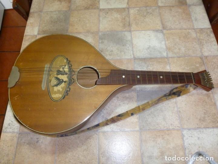 CÍSTER DEL BOSQUE ALEMÁN (Música - Instrumentos Musicales - Cuerda Antiguos)