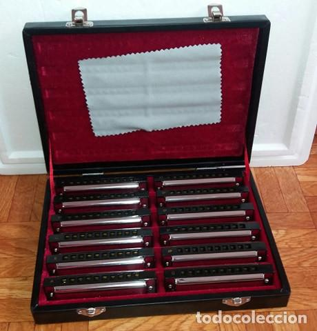 Instrumentos musicales: Harley Benton Blues Harp Set - Mundharmonikas - Armonica - Harmonica set de 12 diferentes en su caja - Foto 2 - 152881046