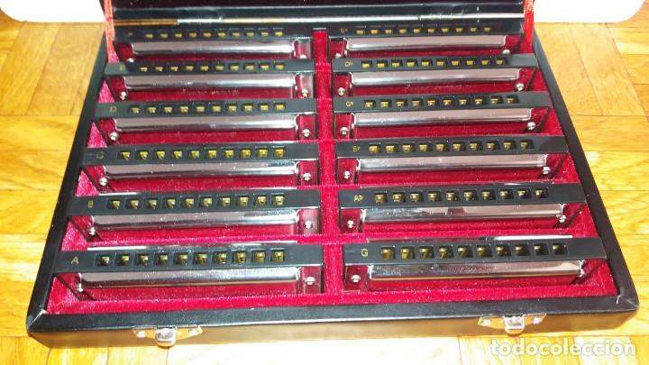 Instrumentos musicales: Harley Benton Blues Harp Set - Mundharmonikas - Armonica - Harmonica set de 12 diferentes en su caja - Foto 3 - 152881046