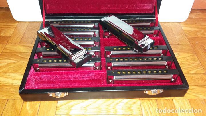 Instrumentos musicales: Harley Benton Blues Harp Set - Mundharmonikas - Armonica - Harmonica set de 12 diferentes en su caja - Foto 4 - 152881046