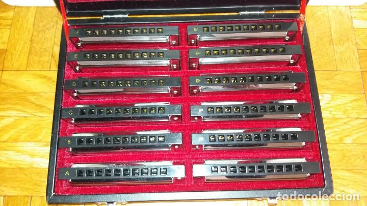 Instrumentos musicales: Harley Benton Blues Harp Set - Mundharmonikas - Armonica - Harmonica set de 12 diferentes en su caja - Foto 5 - 152881046