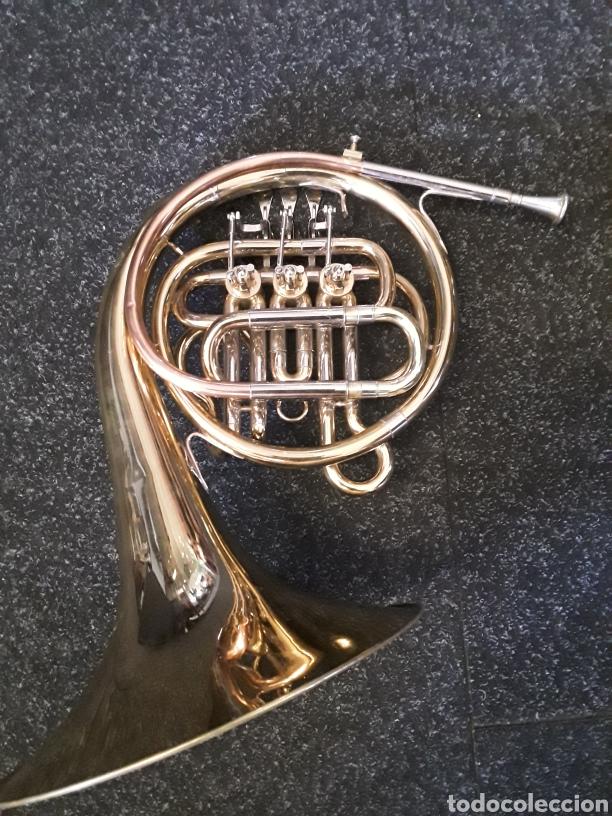 Instrumentos musicales: Trompa musical - Foto 3 - 165155526