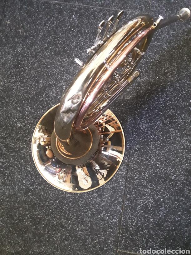 Instrumentos musicales: Trompa musical - Foto 4 - 165155526