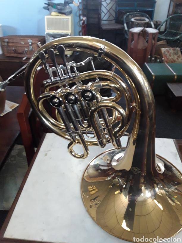 Instrumentos musicales: Trompa musical - Foto 6 - 165155526