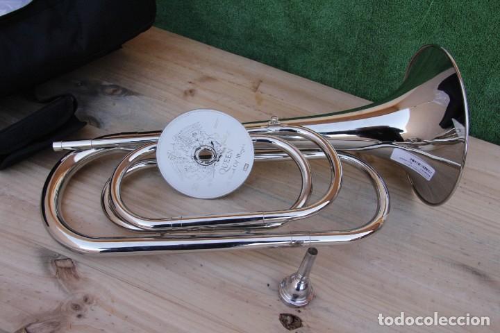 Instrumentos musicales: Instrumento de viento, Clarín Natural. - Foto 4 - 203244171