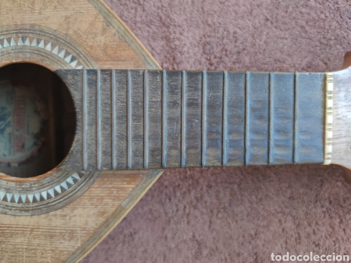 Instrumentos musicales: Guitarra Bandurria telesforo julve old mandolin - Foto 13 - 205279035