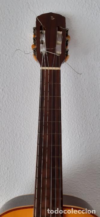 Instrumentos musicales: GUITARRA CRIOLLA DI GIORGIO, BRASIL 1979, MODELO SANTANA C1. SAO PAULO. - Foto 3 - 213642905