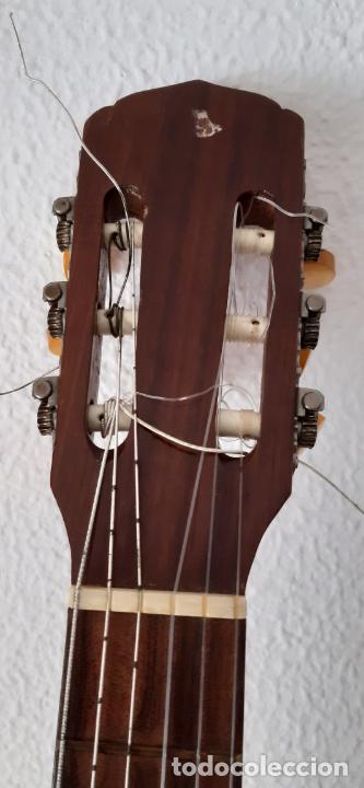 Instrumentos musicales: GUITARRA CRIOLLA DI GIORGIO, BRASIL 1979, MODELO SANTANA C1. SAO PAULO. - Foto 9 - 213642905