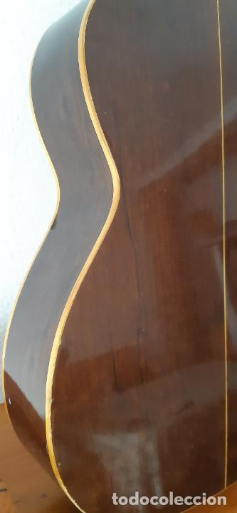 Instrumentos musicales: GUITARRA CRIOLLA DI GIORGIO, BRASIL 1979, MODELO SANTANA C1. SAO PAULO. - Foto 18 - 213642905