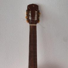 Instrumentos musicales: GUITARRA CRIOLLA DI GIORGIO, BRASIL 1979, MODELO SANTANA C1. SAO PAULO.. Lote 213642905