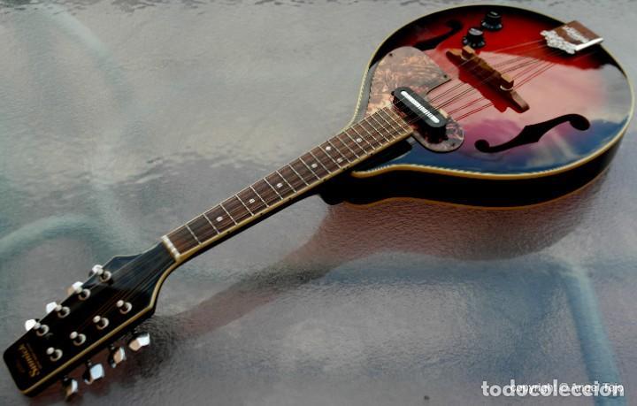MANDOLINA ELECTRO-ACÚSTICA SAMICK. GREG BENNET. (Música - Instrumentos Musicales - Cuerda Antiguos)