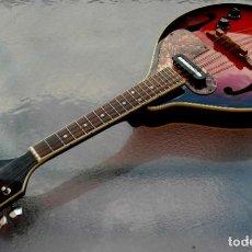 Instrumentos musicales: MANDOLINA ELECTRO-ACÚSTICA SAMICK. GREG BENNET.. Lote 241718345