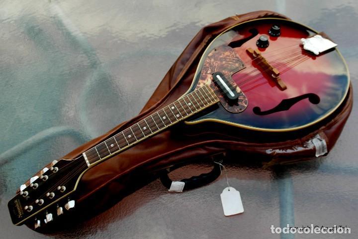 Instrumentos musicales: Mandolina electro-acústica Samick. Greg Bennet. - Foto 3 - 241718345
