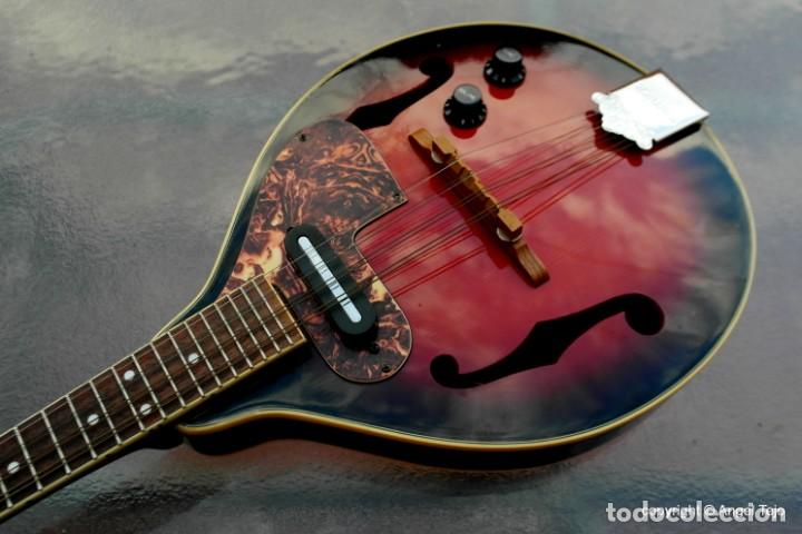 Instrumentos musicales: Mandolina electro-acústica Samick. Greg Bennet. - Foto 4 - 241718345