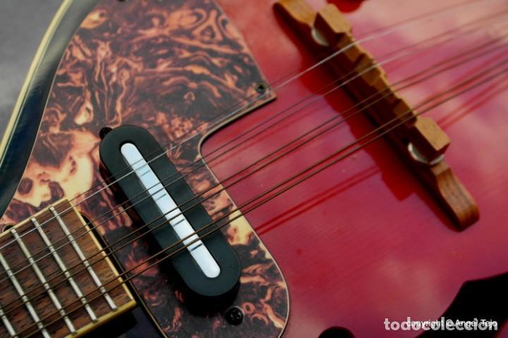 Instrumentos musicales: Mandolina electro-acústica Samick. Greg Bennet. - Foto 5 - 241718345