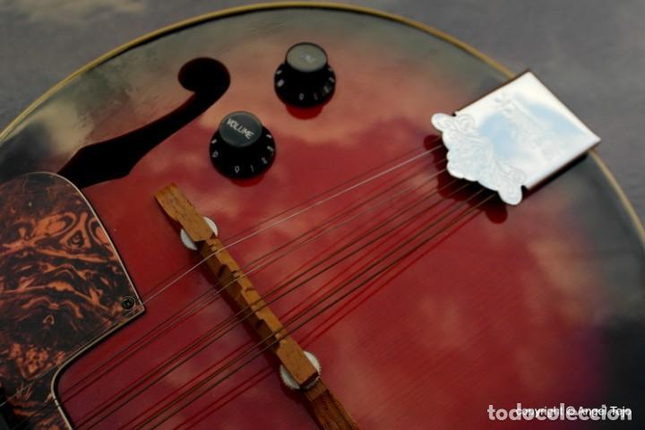 Instrumentos musicales: Mandolina electro-acústica Samick. Greg Bennet. - Foto 6 - 241718345