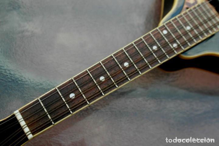 Instrumentos musicales: Mandolina electro-acústica Samick. Greg Bennet. - Foto 7 - 241718345
