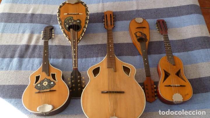 Instrumentos musicales: Lote de 5 mandolinas - Foto 2 - 265548719