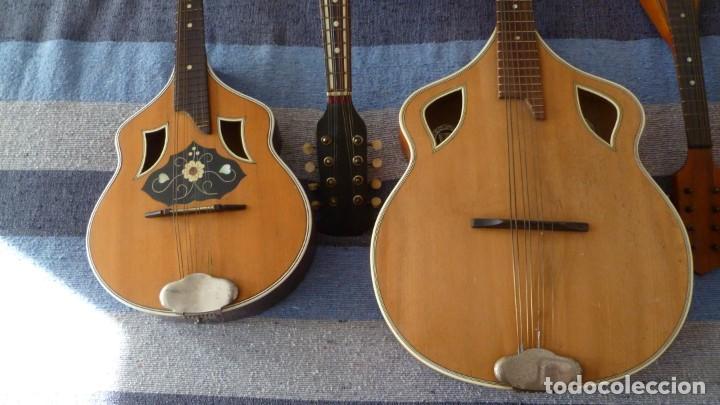 Instrumentos musicales: Lote de 5 mandolinas - Foto 3 - 265548719