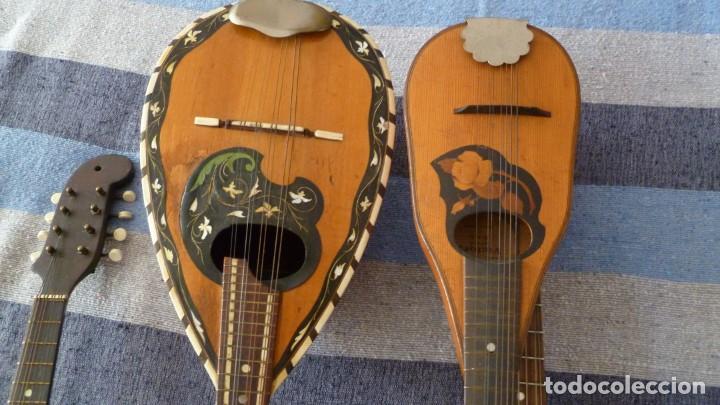 Instrumentos musicales: Lote de 5 mandolinas - Foto 5 - 265548719