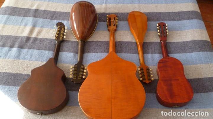 Instrumentos musicales: Lote de 5 mandolinas - Foto 9 - 265548719