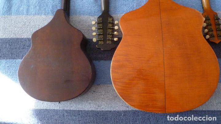 Instrumentos musicales: Lote de 5 mandolinas - Foto 10 - 265548719