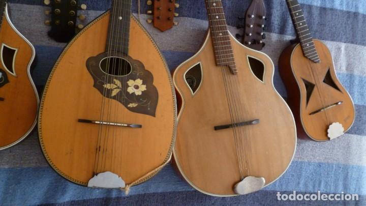 Instrumentos musicales: 7 mandolinas del XIX-XX - Foto 12 - 265549569