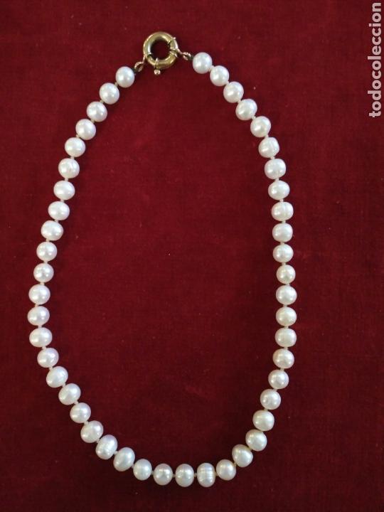 da8f47c7984f Collar de perlas y broche de oro - Vendido en Venta Directa - 75196701