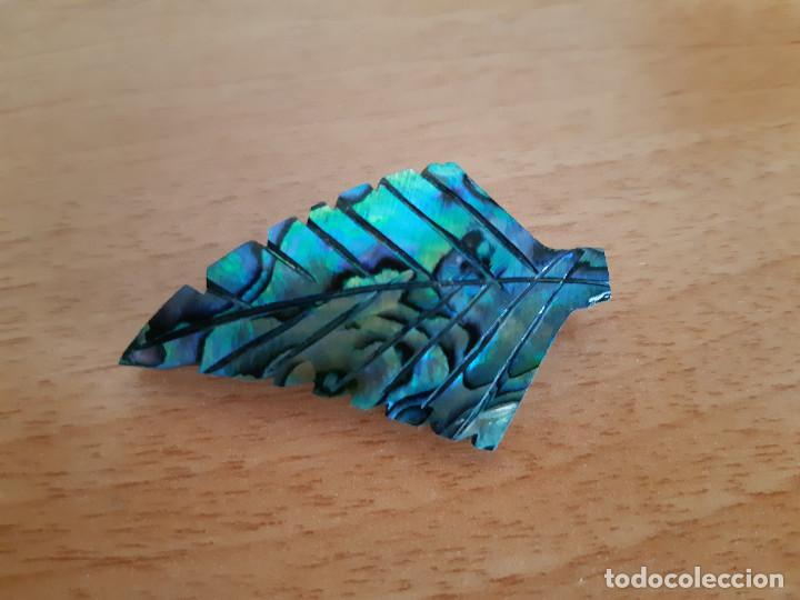 Joyeria: Broche de Abalone / Paua / Haliotis iris (Nueva Zelanda) - Foto 3 - 169123292