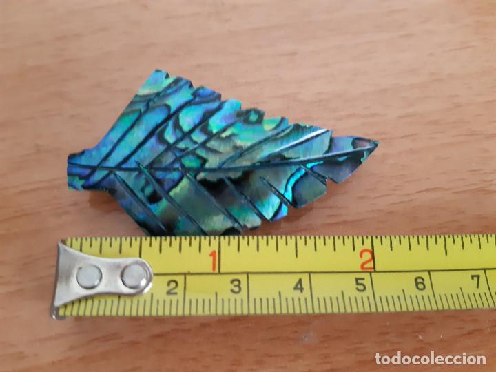 Joyeria: Broche de Abalone / Paua / Haliotis iris (Nueva Zelanda) - Foto 6 - 169123292