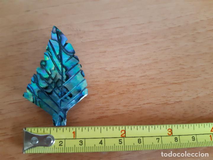 Joyeria: Broche de Abalone / Paua / Haliotis iris (Nueva Zelanda) - Foto 7 - 169123292