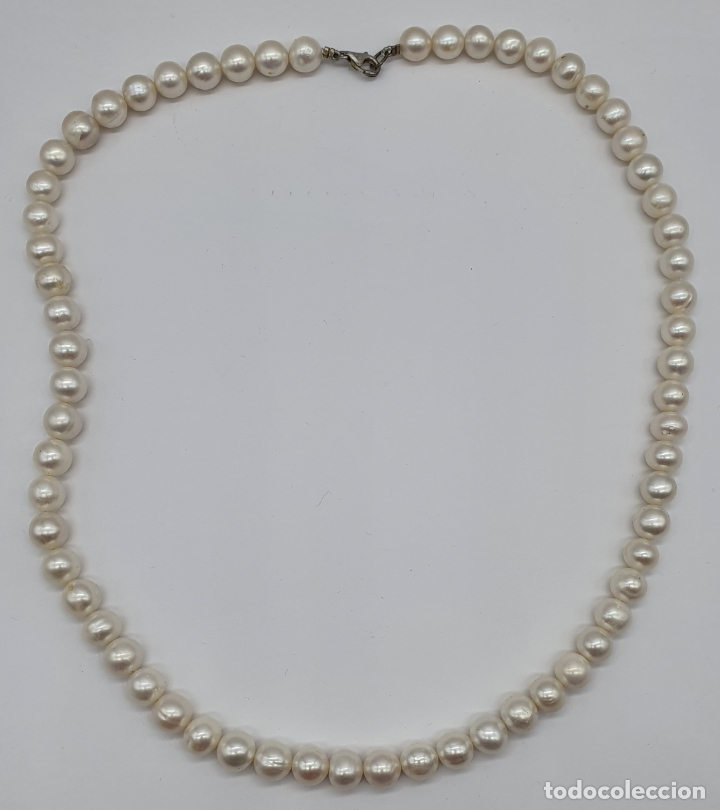 Joyeria: Bella gargantilla vintage de perlas auténticas y cierre en plata de ley contrastado . - Foto 4 - 182087817