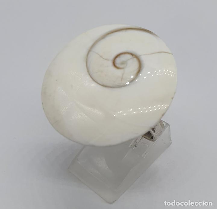 Joyeria: Magnífico anillo de diseño en plata de ley contrastada con gran ojo de shiva autentico . - Foto 3 - 184210747