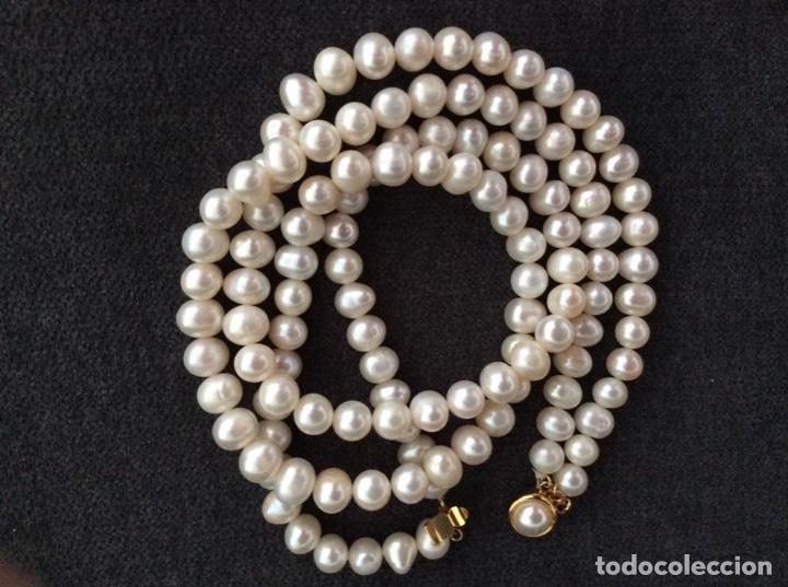 Joyeria: Collar de perlas cultivadas de dos vueltas que se puede hacer largo cerrando el broche en el centro - Foto 2 - 194901945