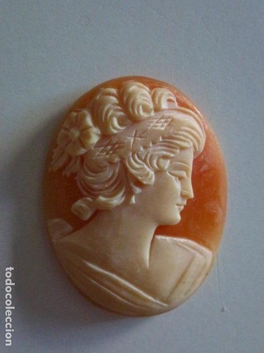 Joyeria: Camafeo europeo concha. Siglo XIX / XX.- Excelente talla . Ver fotos. - Foto 2 - 211610826