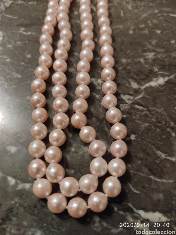 Joyeria: Collar de perlas cultivadas y cierre de plata (Dispongo de mas collares por si le interesara ) - Foto 4 - 91377497