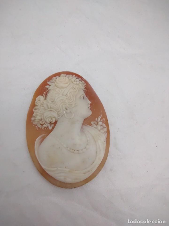 Joyeria: Camafeo antiguo esculpido en concha - Foto 2 - 253549435