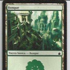 Juegos Antiguos: +-+ CR11 - MAGIC THE GATHERING - BOSQUE - TIERRA BASICA - BOSQUE. Lote 33637186