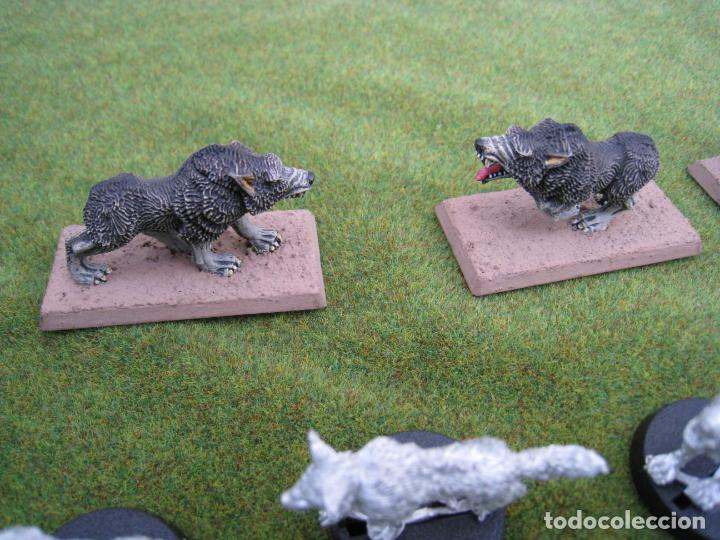 Juegos Antiguos: MALETA CON FIGURAS WARHAMMER. - Foto 27 - 155839354