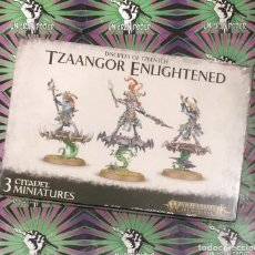 Juegos Antiguos: WARHAMMER TZAANGOR ENLIGHTENED AGE OF SIGMAR. Lote 205336108