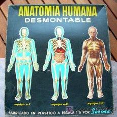 Juegos antiguos: ANATOMIA HUMANA. CASA SERIMA. EQUIPO Nº 3. NUEVO Y COMPLETO. AÑOS 60. CON INSTRUCCIONES.. Lote 152051441