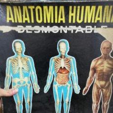 Juegos antiguos: JUEGO ANATOMÍA HUMANA CON INSTRUCCIONES, CAJA MAL ESTADO. VER FOTOS.. Lote 150569502