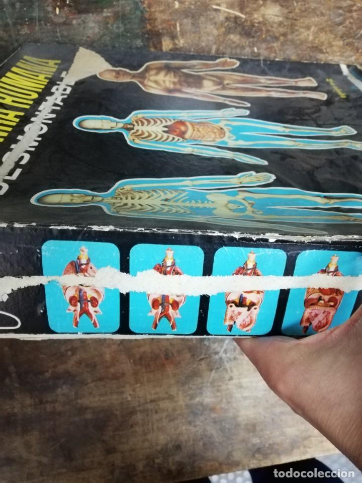 Juegos antiguos: Juego Anatomía humana con instrucciones, caja mal estado. Ver fotos. - Foto 3 - 150569502