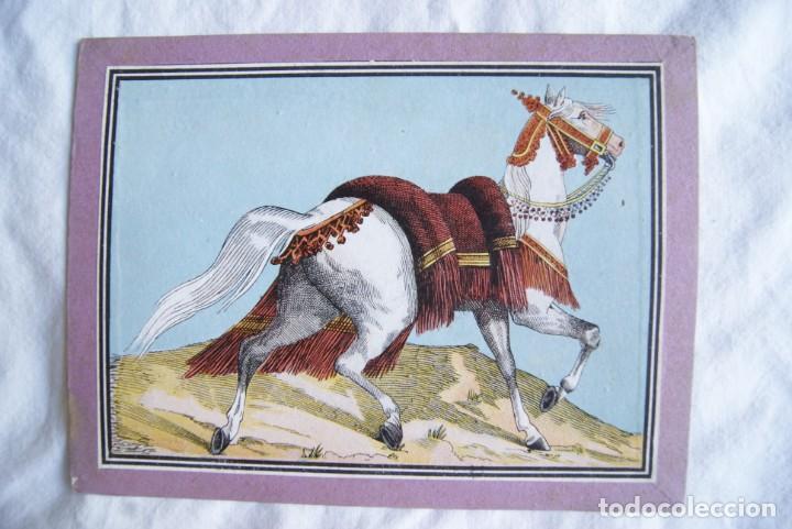 Juegos antiguos: JUEGO DEL CABALLO BLANCO ANTIGUO CON CAJA 2 TIPOS TARJETAS VER FOTOS - Foto 11 - 217119586