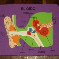 Juegos educativos: PUZZLE EVA. EL OIDO. 25 X 21 CM. SIN USAR. VER FOTOS.. Lote 41497274
