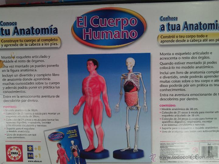 juego anatomia humana con cd-rom- educa. - Comprar Juegos educativos ...