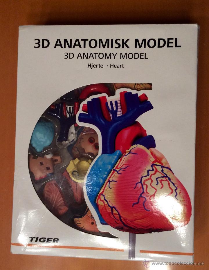 Maqueta De Corazon 3d Tiger Comprar Juegos Educativos Antiguos En
