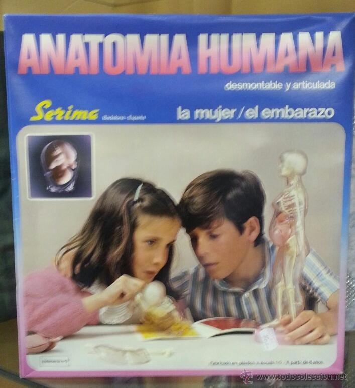 anatomia humana el embarazo. de la firma serim - Comprar Juegos ...